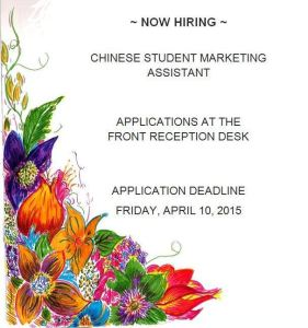 chinese marketers assistant